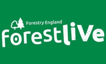 Forest Live 2020 Cancelled Due to Coronavirus